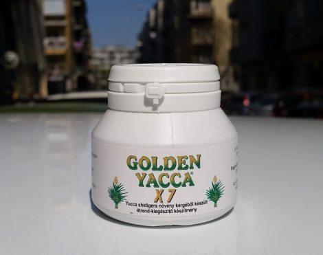 Golden Yacca X7